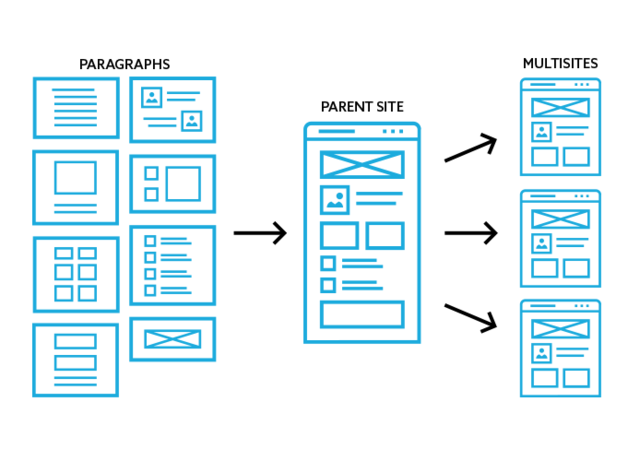 Image showing relationship between Drupal paragraphs, parent website, and multisites